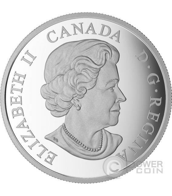 BRILLIANT BIRCH LEAVES Betulla Drusy Stone Moneta Argento 20$ Canada 2017