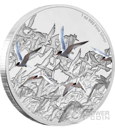 ARCTIC TERN Great Migrations 1 Oz Silver Coin 2$ Niue 2017