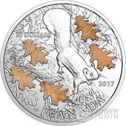 NUTTY SQUIRREL MIGHTY OAK Silver Coin 20 Dollars Canada 2017