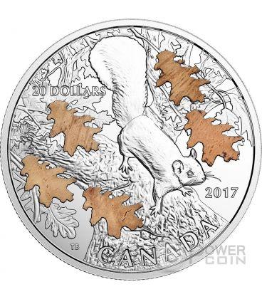 NUTTY SQUIRREL MIGHTY OAK Scoiattolo Quercia Moneta Argento 20 Dollari Canada 2017