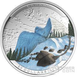 SNOWY OWL Civetta Landscape Illusion Illusione Moneta Argento 20$ Canada 2017