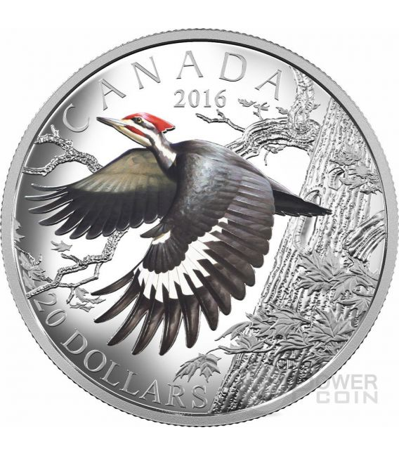 PILEATED WOODPECKER The Migratory Birds Convention 100 Years of Protection Silver Coin 20$ Canada 2016