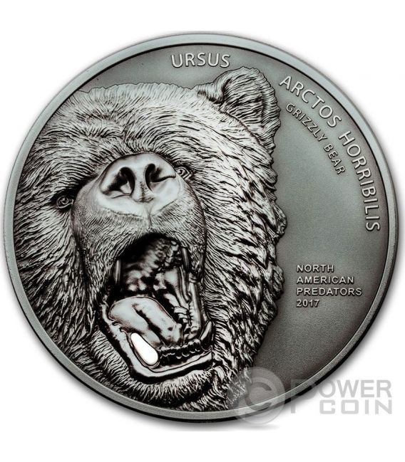 GRIZZLY BEAR Ursus Arctos Horribilis Orso Dente Ceramica North American Predators 2 Oz Moneta Argento 10$ Cook Islands 2017