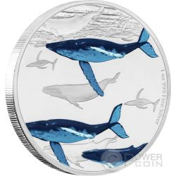 HUMPBACK WHALE Megattera Great Migrations 1 Oz Moneta Argento 2$ Niue 2017