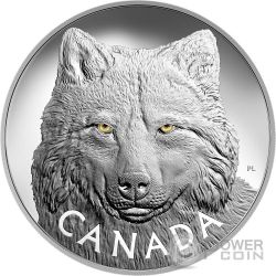 TIMBER WOLF EYES Gold Enamel 1 Kg Kilo Silver Coin 250$ Canada 2017