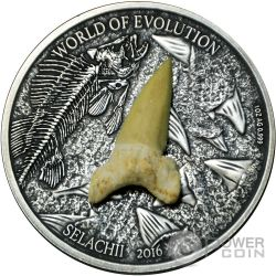 SELACHII World of Evolution Sharks Squali 1 Oz Moneta Argento 1000 Franchi Burkina Faso 2016