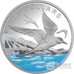 ARCTIC TERN Sterna Codalunga Glistening North 1 Oz Moneta Argento 20$ Canada 2017
