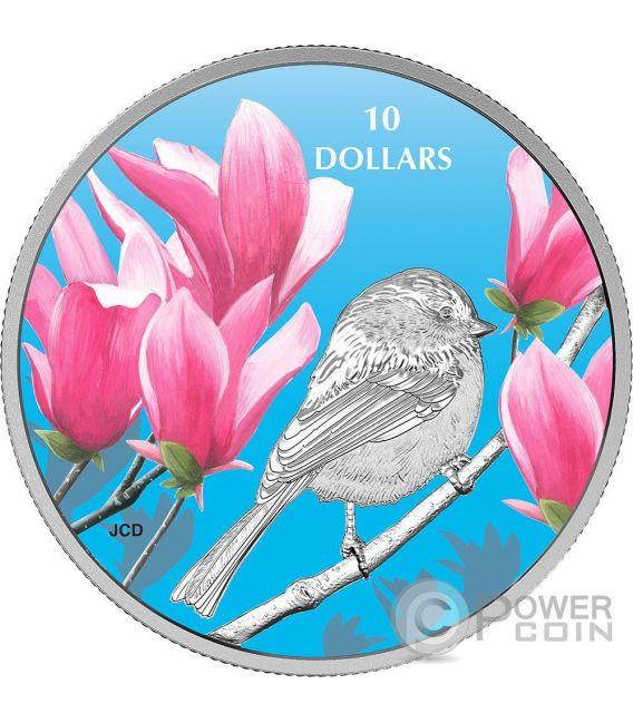 CHICKADEE Cincia Birds Among Nature Colours Silver Coin 10$ Canada 2017