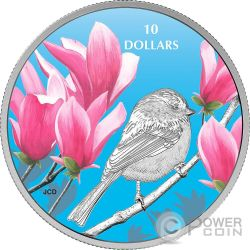 CHICKADEE Cincia Birds Among Nature Colours Silver Coin 10$ Canada 2017