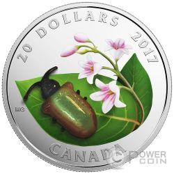 DOGBANE BEETLE Coleoptero Little Creatures Vidrio Murano Moneda Plata 20$ Canada 2017