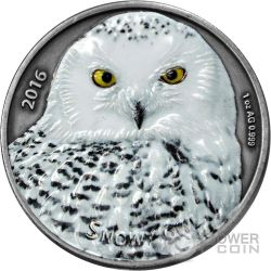 SNOWY OWL Buho Nival 1 Oz Moneda Plata 1000 Francos Burkina Faso 2016