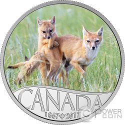 WILD SWIFT FOX AND PUPS Zorro y Cachorros Celebrating 150th Anniversary Silver Coin 10$ Canada 2017