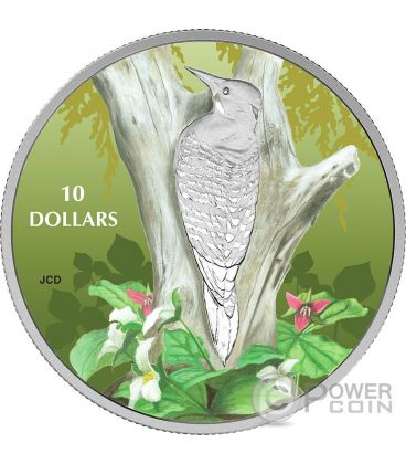 NORTHERN FLICKER Birds Among Nature Colours Silver Coin 10$ Canada 2017
