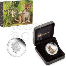 DINGO Bush Babies Plata Proof Moneda 50c Australia 2011