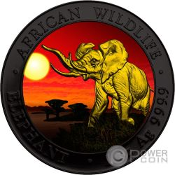 ELEPHANT SUNSET Elefant Sonnenuntergang Ruthenium African Wildlife 1 Oz Silber Münze 100 Shillings Somalia 2016