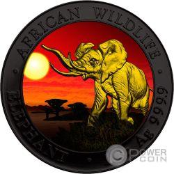ELEPHANT SUNSET Elefante Tramonto Rutenio African Wildlife 1 Oz Moneta Argento 100 Shillings Somalia 2016