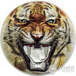 BENGAL TIGER Tigre del Bengala Rare Wildlife 2 Oz Moneda Plata 1500 Shillings Tanzania 2017