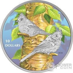 TUFTED TITMOUSE Birds Among Nature Colours Silver Coin 10$ Canada 2017