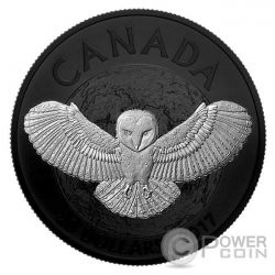 BARN OWL Barbagianni Nocturnal By Nature 1 Oz Moneta Argento 20$ Canada 2017