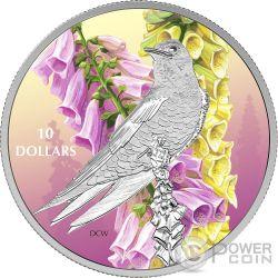 PURPLE MARTIN Swallow Birds Among Nature Colours Silver Coin 10$ Canada 2017