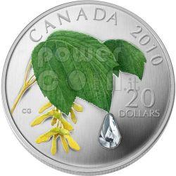 RAINDROP Crystal Swarovski Moneda Plata 20$ Canada 2010