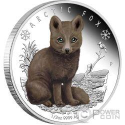 ARCTIC FOX Polar Babies Silver Coin 50 Cents Tuvalu 2017