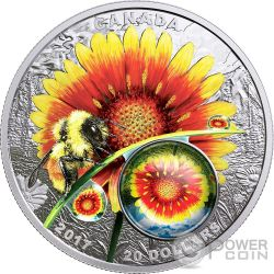 BEAUTY UNDER THE SUN Mother Nature Magnification 1 Oz Silver Coin 20$ Canada 2017