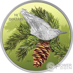 NUTHATCH Sitta Birds Among Nature Colours Silver Coin 10$ Canada 2017