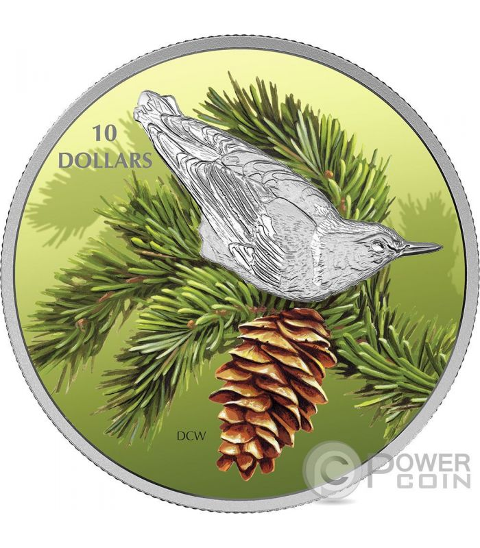 Nuthatch Sitta Birds Among Nature Colours Silver Coin 10