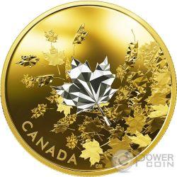 WHISPERING MAPLE LEAVES Sussurro Foglie Acero 3 Oz Moneta Argento 50$ Canada 2017