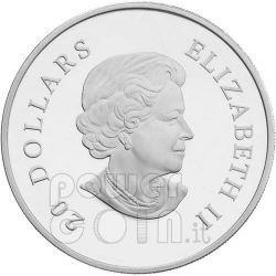 SNOWFLAKE BLUE Moneda Plata Swarovski 20$ Canada 2010