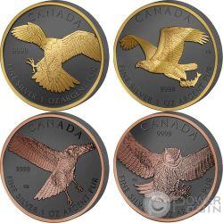 BIRDS OF PREY Uccelli Predatori Golden Enigma Set 4x1 Oz Monete Argento 5$ Canada 2014 2015
