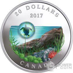 SEA TURTLE Tortuga Marina Under The Sea 1 Oz Moneda Plata 20$ Canada 2017