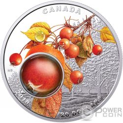 MORNING DEW Rocio Manana Mother Nature Magnification 1 Oz Moneda Plata 20$ Canada 2018