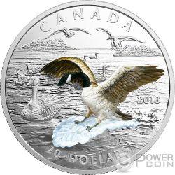 GOOSE Ganso Three Dimensional 3D 1 Oz Moneda Plata 20$ Canada 2017