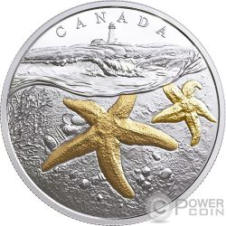 ATLANTIC STARFISH Stella Marina From Sea To Sea To Sea 1 Oz Moneta Argento 20$ Canada 2017