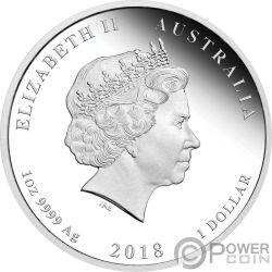 DOG Lunar Year Series Coloured 1 Oz Silver Coin 1$ Australia 2018