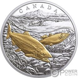 PACIFIC SALMON From Sea To Sea To Sea 1 Oz Silber Münze 20$ Canada 2017