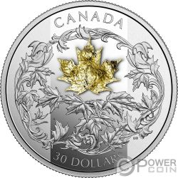GOLDEN MAPLE LEAF 2 Oz Silver Coin 30$ Canada 2018