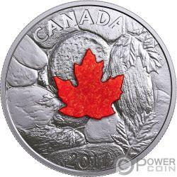 MAJESTIC MAPLE LEAVES Foglia Acero Maestuosa Pietra Drusa 1 Oz Moneta Argento 20$ Canada 2017