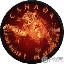 TIGER Tigre Burning Wildlife 1 Oz Moneta Argento 5$ Canada 2017