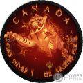TIGER Tigre Burning Wildlife 1 Oz Moneda Plata 5$ Canada 2017