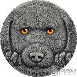 YEAR OF THE DOG Perro Chinese Lunar Calendar 3 Oz Moneda Plata 3000 Francos Cameroon 2018
