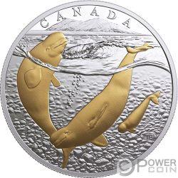 PACIFIC SALMON Pacifico From Sea To Sea To Sea 1 Oz Moneda Plata 20$ Canada 2017
