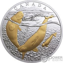 PACIFIC BELUGA Pacifico Artico From Sea To Sea To Sea 1 Oz Moneta Argento 20$ Canada 2017