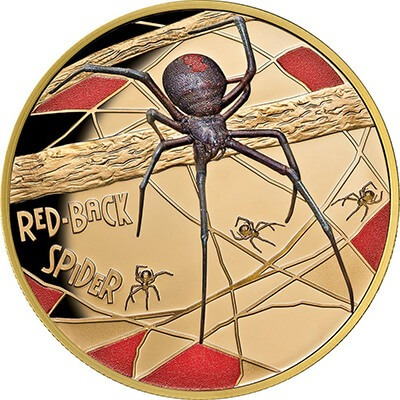 Red Back Spider Obverse